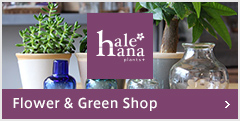 Flower & Green Shop:hale-hana Plants+
