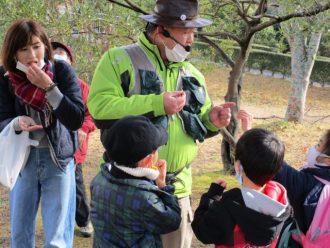 主催イベント:【植物ネイチャーガイド】しまっちの自然と遊ぼう!の画像