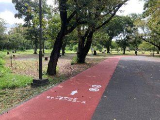 公園だより最新投稿写真